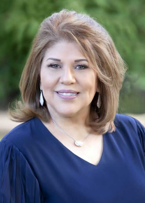 Silvia Perez Garza County Clerks Website